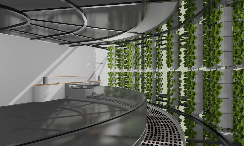 Hydroforest – Der Garten der Zukunft