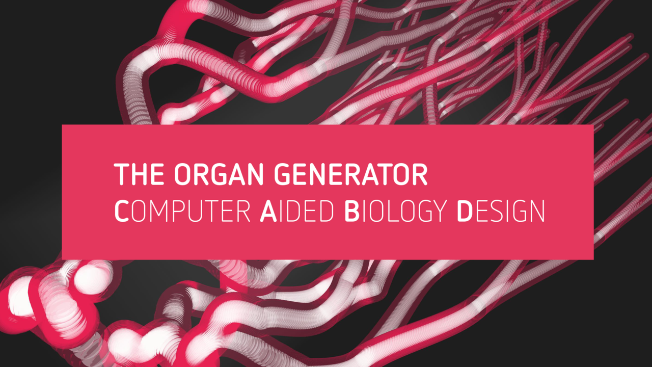 The Organ Generator - Computer Aided Biology Design