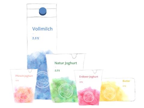 Mark Brandenburg Redesign - Visuelle Identität BASICs
